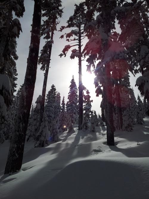 Sun:Snow Pic